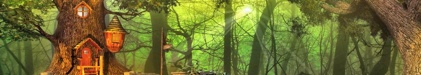 Shiatsu-Do - la cabane du shiatsu à Angers - Meister